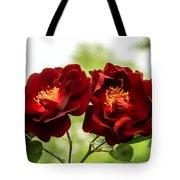 Dark Red Roses Tote Bag