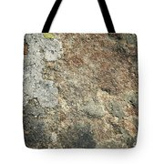 Dark Sandstone Surface With Moss Tote Bag