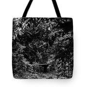 Dark Summer Woods Tote Bag