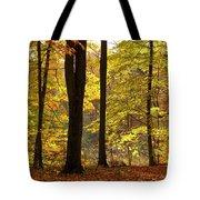 Dark Trunks Bright Leaves Tote Bag