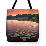 Dark Turns To Light Tote Bag