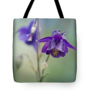 Dark Violet Columbine Flowers Tote Bag