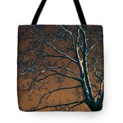 Dark Woods II Tote Bag