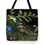 Dart Frogs On The Move Tote Bag