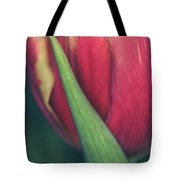 Dash Of Delicate IIi Tote Bag