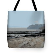 Dash Point Tote Bag