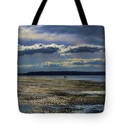 Dash Point State Park 2 Tote Bag