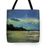 Dash Point State Park Tote Bag