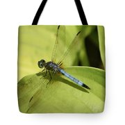 Dasher In My Pond Tote Bag