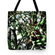 Date Palm  Tote Bag