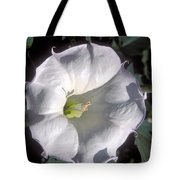 Datura Lily Tote Bag
