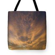 Dauphin Heavens Tote Bag
