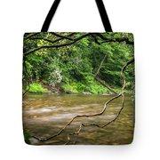 Davidson River Tote Bag
