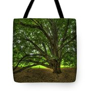 Dawes Arboretum Tote Bag