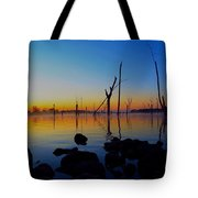 Dawn Delight Tote Bag
