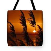 Dawn Grasses Tote Bag