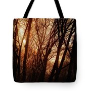 Dawn In The Trees Tote Bag