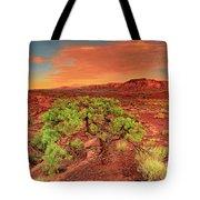 Dawn Light Capitol Reef National Park Utah  Tote Bag