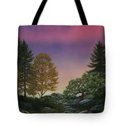 Dawn Of Day Tote Bag