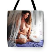 Dawn's Early Light #3 Tote Bag