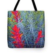 Dawns Impressionistic Paintbrush Tote Bag