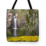 Day At The Falls Tote Bag