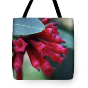 Day Blooming Jasime Tote Bag