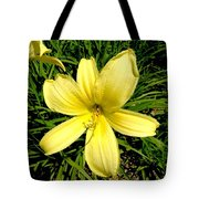 Day Daisy Tote Bag