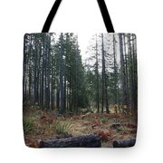 Day In The Park Tote Bag
