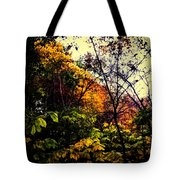 Day In The Woods  Tote Bag
