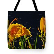 Day Lilies, Dark, Background Tote Bag