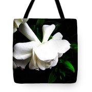 Day Lillie  Tote Bag