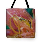 Day Lilly Stamens 1a Tote Bag