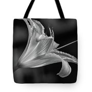 Day Lily 2 Bw Tote Bag