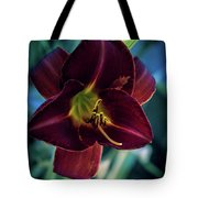 Day Lily Dark Tote Bag