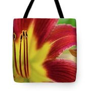 Day Lily Macro Tote Bag