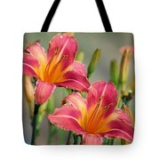 Day Lily Twins Tote Bag