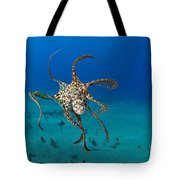 Day Octopus Tote Bag