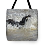 Day On The River Tote Bag
