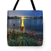 Daybreak And Cloudy Seascape And Aloe Vera Tote Bag