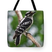 Daydreaming Downy Woodpecker Tote Bag