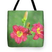 Daylilies Tote Bag