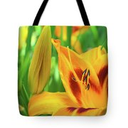 Daylily Bud And Bloom Tote Bag