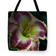 Daylily Collection # 13 Tote Bag