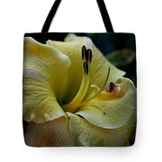 Daylily Collection # 5 Tote Bag