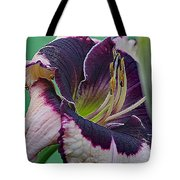 Daylily Collection #12 Tote Bag