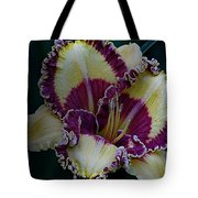 Daylily Collection #9 Tote Bag