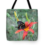 Daylily Delight 2 Tote Bag