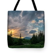 Days End In The Bog Tote Bag