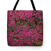 Dazzled By Red Tote Bag
